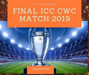 Final match World cup 2019