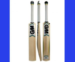 TOP 5 BEST CRICKET BATS 2020
