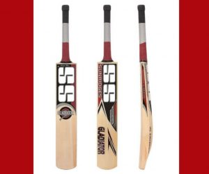 TOP 10 BEST CRICKET BATS