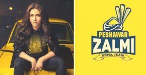 Brand Ambassadors of PZ team
